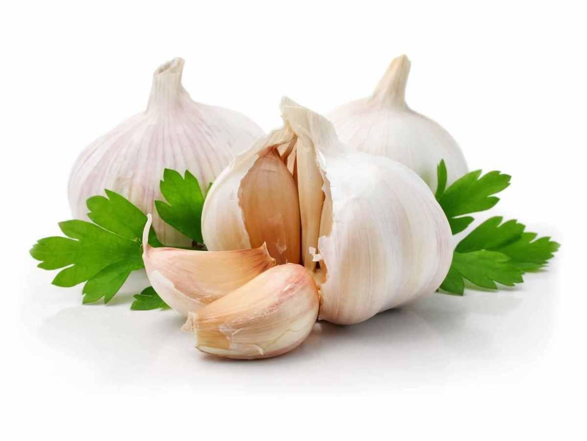Aglio - Incucinaconte - Elenco ingredienti ricette cucina con aglio