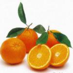 Arance - Incucinaconte - Elenco ingredienti ricette cucina