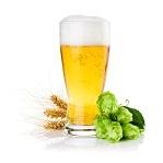 Birra rietta - Elenco ingredienti. Ricette cucina con birra