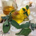 Ricetta Infuso salvia arancia zenzero e miele